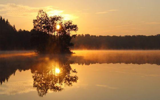 Заставки озеро в лесу, деревья, восход