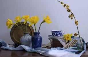 Бесплатные фото ваза,цветы,нарцисс,посуда,натюрморт