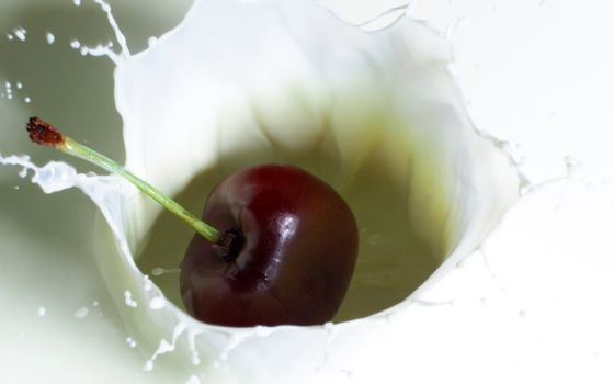 Фото бесплатно ягода, вишня, хвостик, молоко, всплеск, брызги