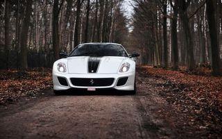Фото бесплатно Ferrari 599 GTO, лес, дорога