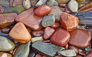 Бесплатные фото галька,камни,мокрые,цветные,вода