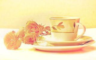 Бесплатные фото блюдца,чашка,узор,цветы,лепестки