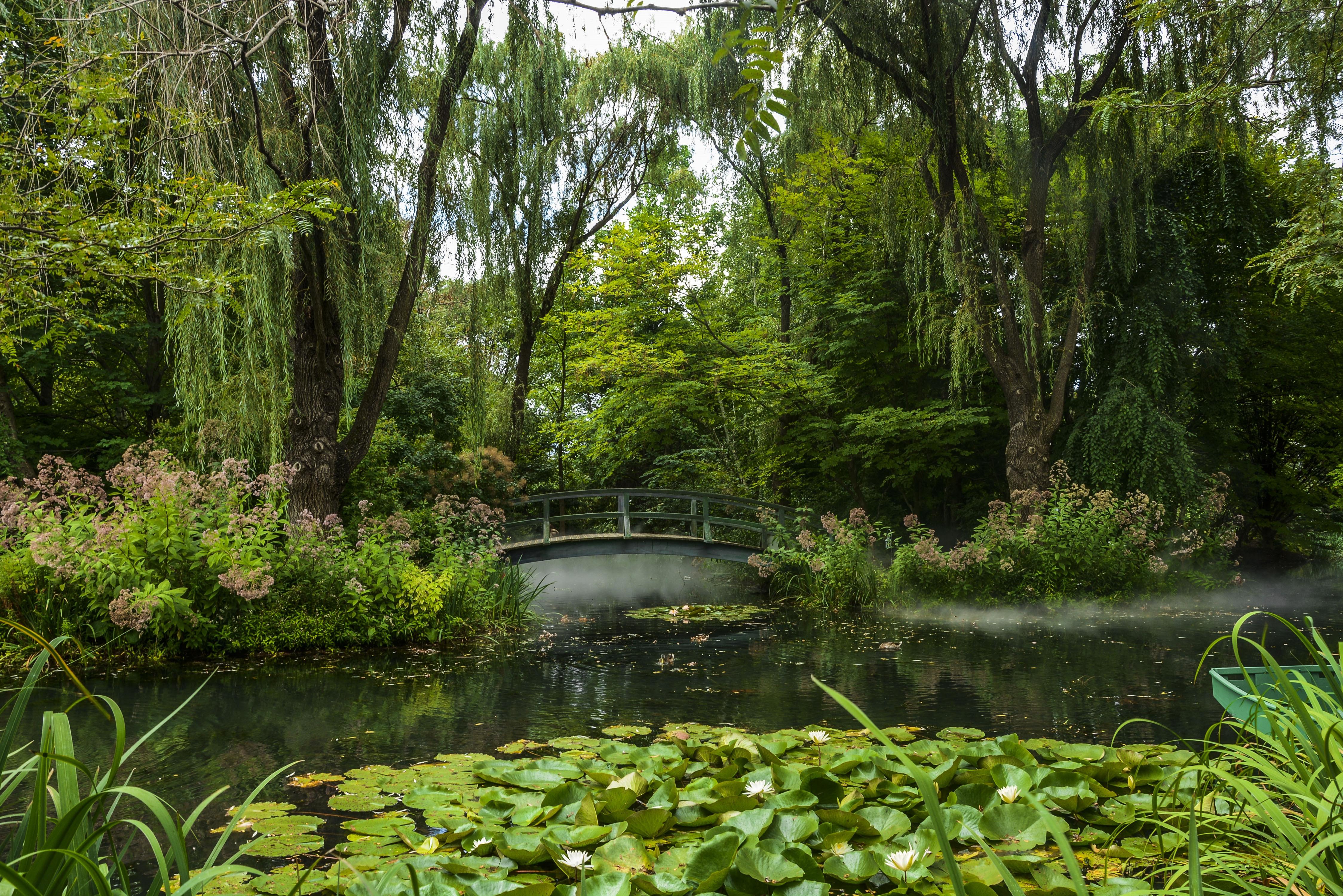 обои парк, водоём, мост, деревья картинки фото
