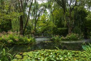 Фото бесплатно парк, водоём, мост