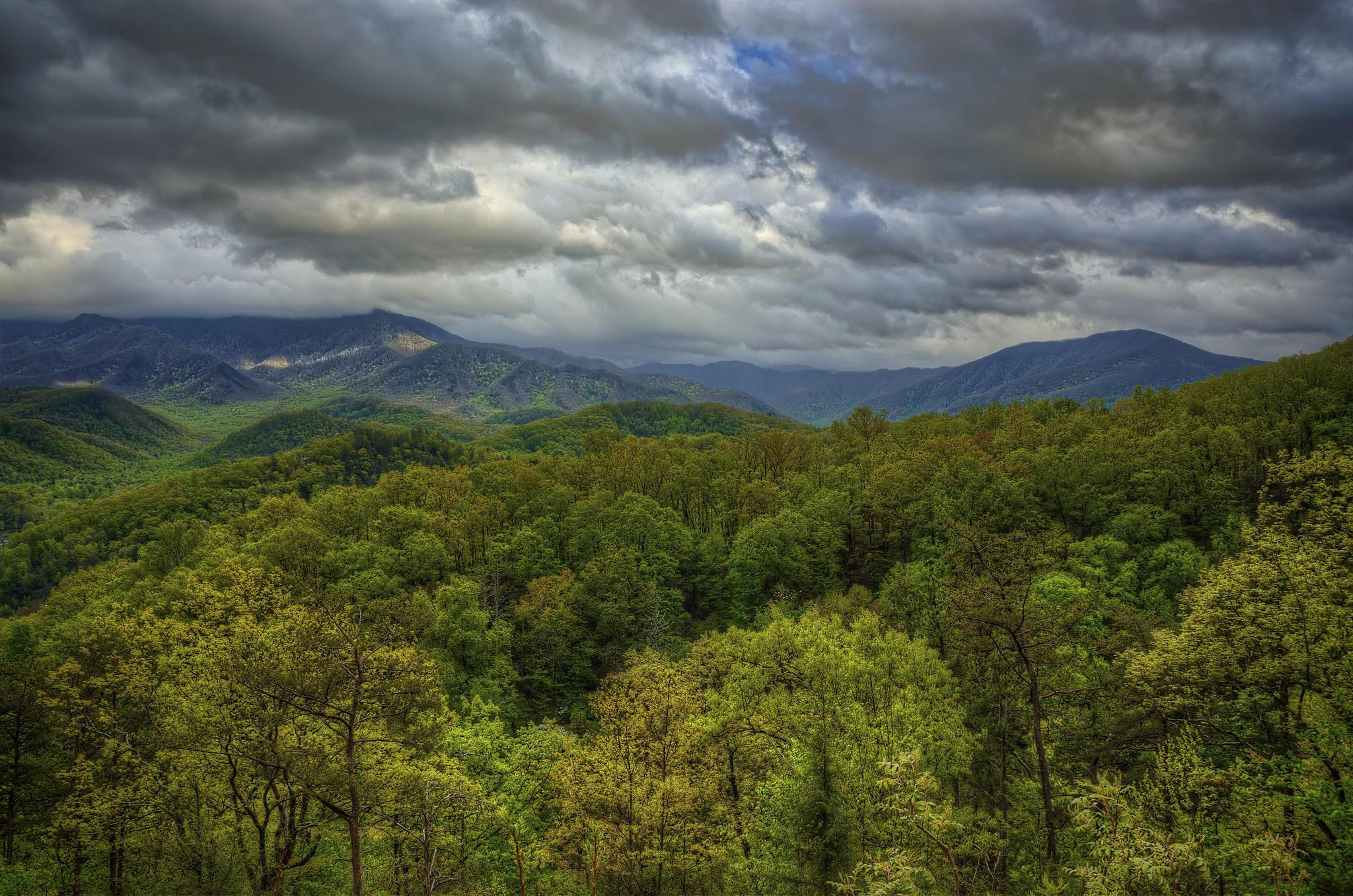 обои Great Smoky Mountains National Park, горы, тучи, деревья картинки фото
