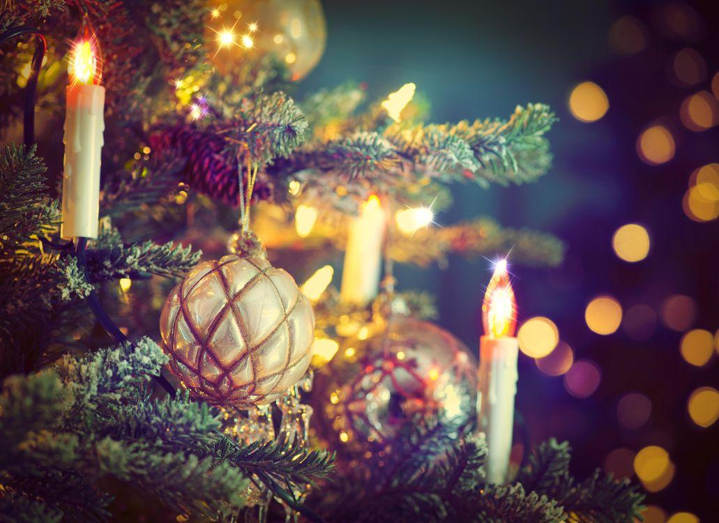 Фото бесплатно Рождество, фон, дизайн, элементы, новогодние обои, новый год, новогодний стиль, новогодняя декорация, ёлка, игрушки, украшения, подарки, новый год