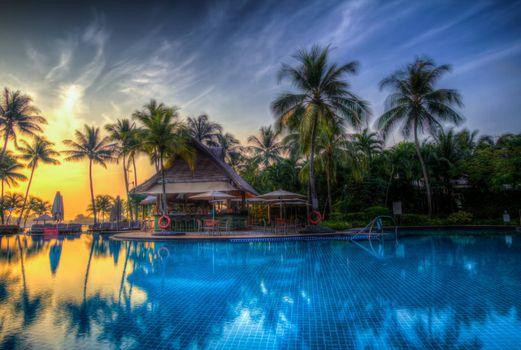Фото бесплатно пальмы, дома, пейзаж