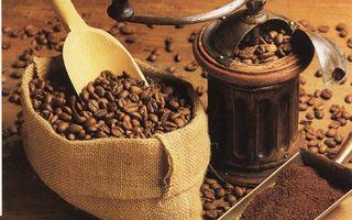 Бесплатные фото мешок, кофе, зерна, молотый, кофемолка, лопатки
