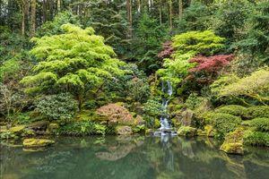 Заставки японский сад в Портленде, США, пейзаж, водопад