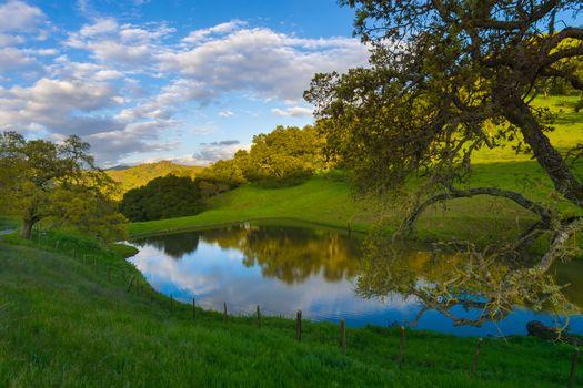 San Benito County, California, холмы, поля, пруд