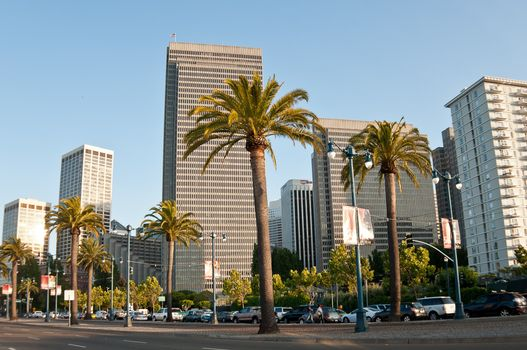 Фото бесплатно дома, пальмы, небоскребы