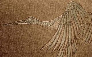 Бесплатные фото материал, рисунок, птица, клюв, крылья