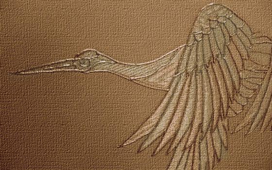 материал, рисунок, птица, клюв, крылья