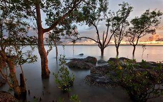 Фото бесплатно деревья, камни, кустарник, озеро, горизонт, небо, облака