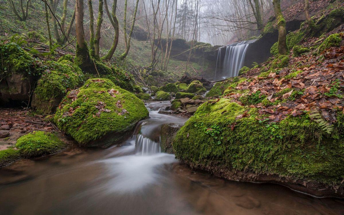 Фото бесплатно осень, речка, лес, деревья, водопад, туман, природа, природа