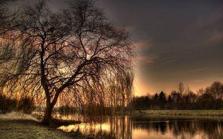 Бесплатные фото берега,трава,деревья,река,небо,облака