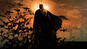 Заставки бэтмен,супергерой,ночь,дома,крыша,летучие мыши