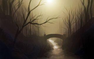 Фото бесплатно мостик, туман, лес