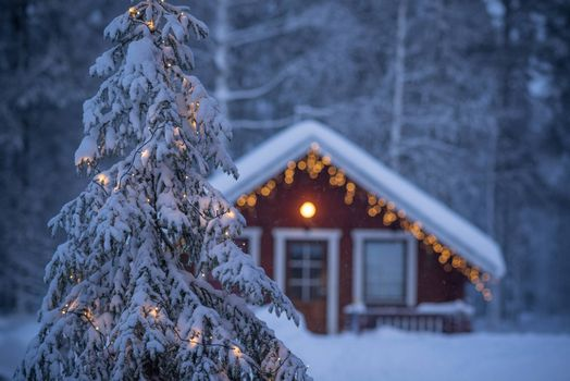 Photo free country house, cottage, Christmas tree