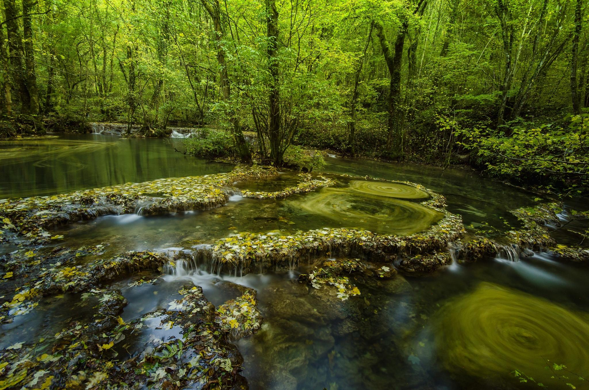 обои лес, деревья, река, водопады картинки фото