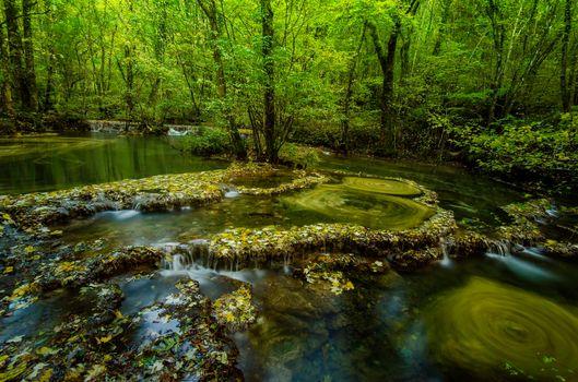 Фото бесплатно водопады, лес, деревья