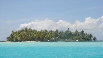 Бесплатные фото тропики,море,остров,пальмы,пристань,лодка,люди