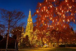 Бесплатные фото Центральный парк,Нью-Йорк,вечер,огни,иллюминация