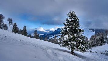 Фото бесплатно зима, горы, холмы