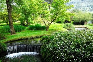 Фото бесплатно Сад Нинфа, Ninfa, является пейзажный сад на территории Чистерна-ди-Латина