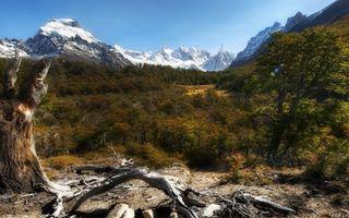 Фото бесплатно предгорье, трава, коряга, кустарник, горы, вершины, снег
