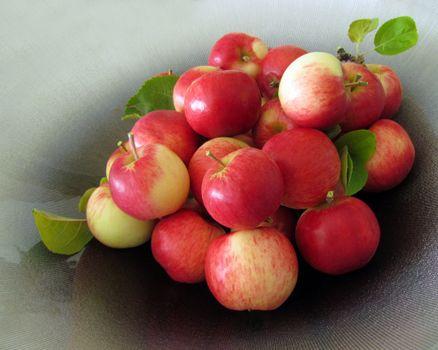 Photo free apples, fruit, food