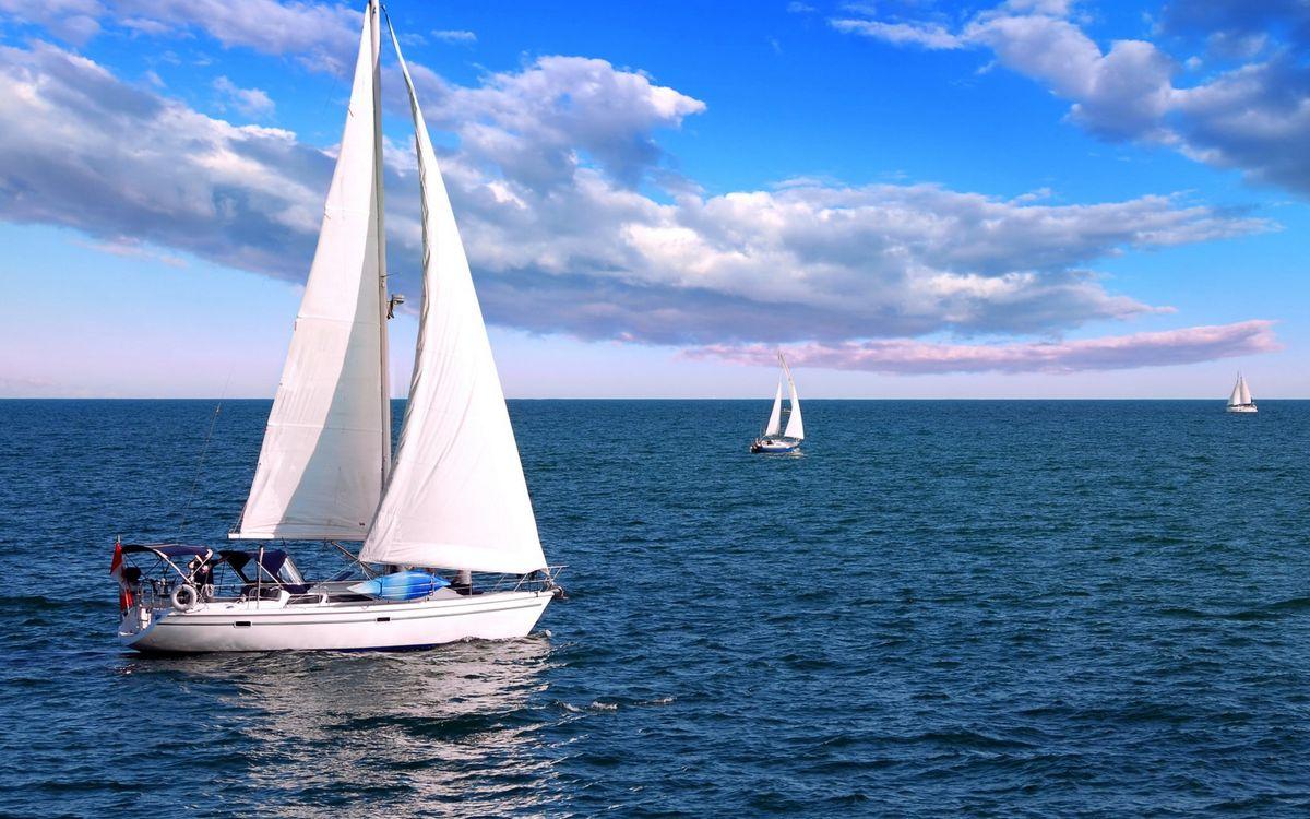 Фото бесплатно яхты, паруса, белые, море, горизонт, небо, облака, корабли