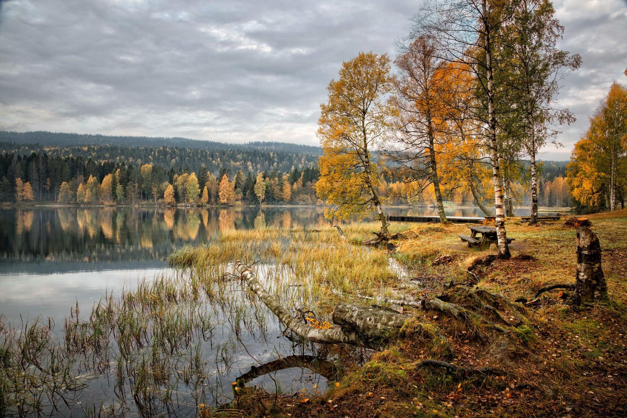 осень, озеро, Норвегия