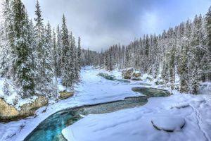 Обои зима, река, лес, деревья, пейзаж, Альберта, Канада