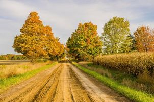 Красивые картинки осень, поле скачать бесплатно