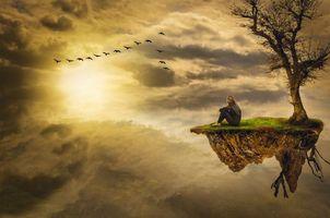 Бесплатные фото закат,небо,стая птиц,остров,дерево,девушка,фантазия