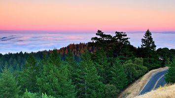 Фото бесплатно горы, лес, деревья, дорога, облака, горизонт, небо