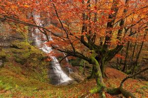 Бесплатные фото Uguna Waterfall,Gorbea Natural Park,Bizkaia,Basque Country,Spain,Природный парк Горбеа,Бискайя