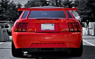 Photo free Red, Mustang, Spoiler