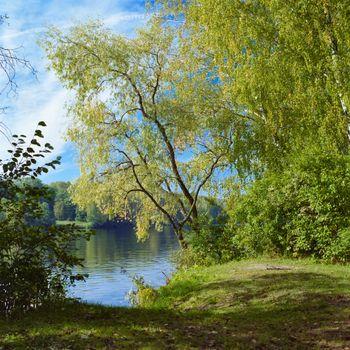 Заставки река,берег,деревья,берёзы,природа