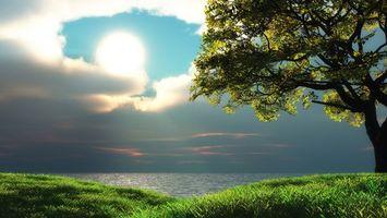 Фото бесплатно берег, трава, дерево, море, горизонт, небо, облака, солнце