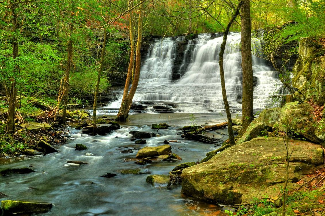 Фото бесплатно лес, река, скалы - на рабочий стол