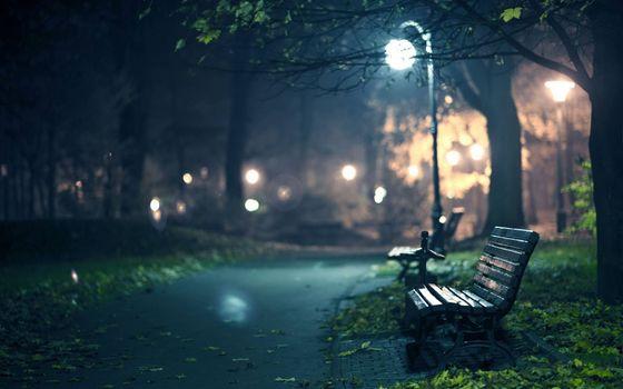 Фото бесплатно ночь, парк, лавочка