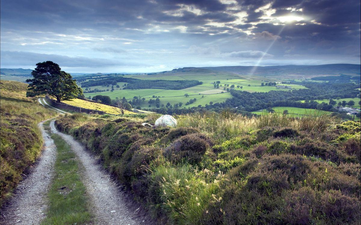 Фото бесплатно холмы, сопки, дорога - на рабочий стол