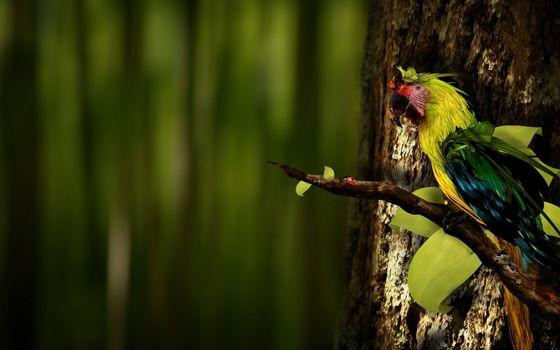 Фото бесплатно ветка, попугай, цветной
