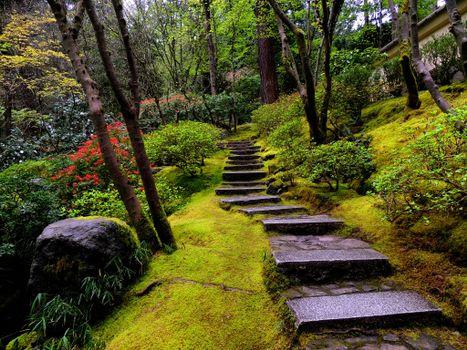 Фото бесплатно Японские сады в парке Вашингтон, Портленд, пейзаж