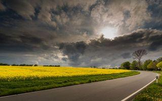 Бесплатные фото закат, поле, дорога, цветы, пейзаж