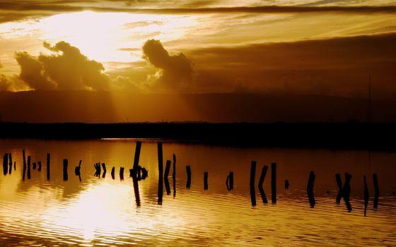 Фото бесплатно вечер, река, сваи