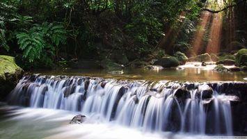 Бесплатные фото водопад,джунгли,деревья,лучи солнца