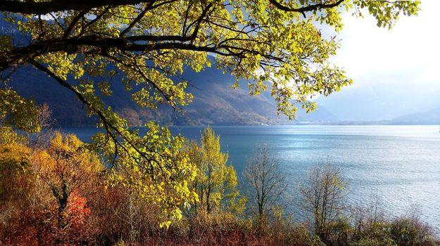 Фото бесплатно озеро Анси, Верхняя Савойя, ФРАНЦИЯ